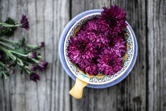 giardino vasi